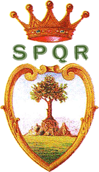 https://www.comune.olevanoromano.rm.it/images/stemma-olevano-romano.png