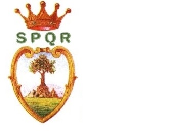 https://www.comune.olevanoromano.rm.it/immagini_news/18-12-2020/1608282180-337-.jpg