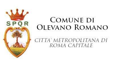 SERVIZIO NAVETTA PER GLI ELETTORI DEL COMUNE DI OLEVANO ROMANO
