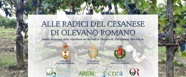 ALLE RADICI DEL CESANESE DI OLEVANO ROMANO