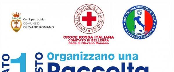 RACCOLTA ALIMENTARE SABATO 1 AGOSTO A SOSTEGNO DELLE FAMIGLIE IN DIFFICOLTA' ECONOMICHE PER EMERGENZA COVID-19