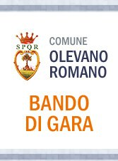 https://www.comune.olevanoromano.rm.it/resizer/resize.php?url=https://www.comune.olevanoromano.rm.it/immagini_news/public/locandina/7-bandi-di-gara-logo.jpg&size=259x350c0