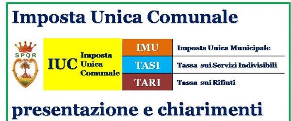 Imposta Unica Comunale: la contribuzione del 2014 nel dettaglio